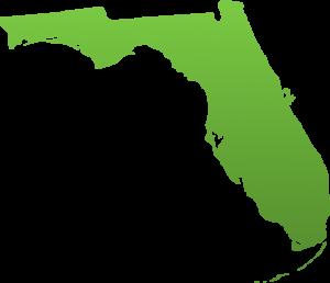 Lifesafer Ignition Interlock Florida
