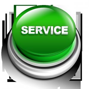 LifeSafer Service Button