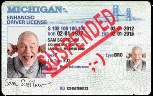 Restricted License
